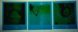 c-prints03